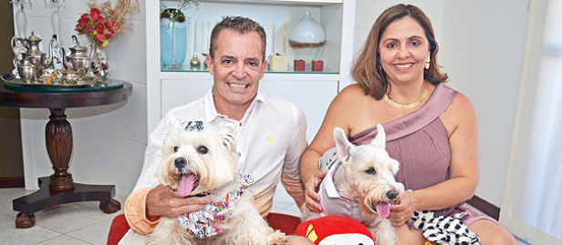 cães vestidos de roupa na casa com os donos